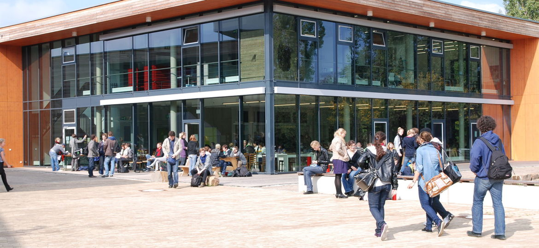 Sozialorganik - Alanus Hochschule